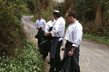 Brook Lodge Chefs Foraging