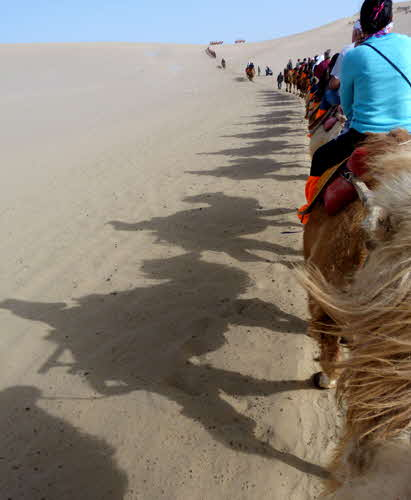 China 2016 Camel Ride Echoing Sand Mountain