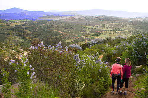Rancho La Puerta Hike Trails