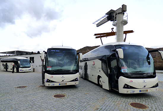 Viking Busses